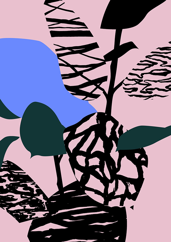 Plants-pink